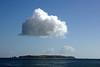 Waiheke Island Trip :